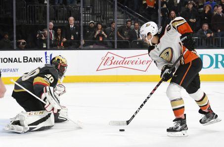 Ducks .jpg
